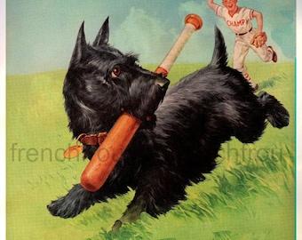 vintage illustration scotty dog and baseball player illustration digital download