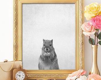 Animal Portrait Squirrel - 8x10 - Squirrel Print, Squirrel Art, Nursery Decor, Kids Room Decor, Kids Room Art, Animal Prints