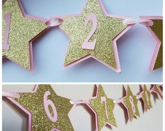 Twinkle Twinkle Pink and Gold 1st Year Banner/Monthly Banner/ Star Banner