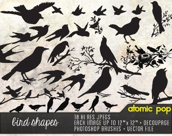 Instant Download // Birds & Aviary Silhouette Shapes // Digital File Photoshop Brushes // Vector