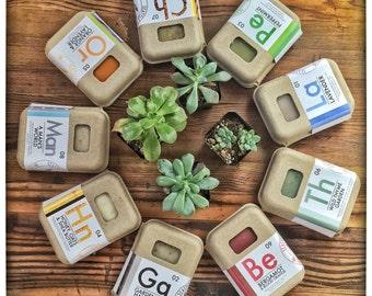 Organic, Herbal Aromatherapy Soap