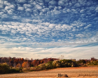 Landschaftsfotografie - herrliche Herbst - 8 x 12 Fine Art Print - Himmel, Wolken, weiß, blau, Beige, Bäume, Herbst, warmen Tönen, Wohnkultur
