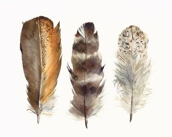 Impression d'Art d'archives de poulet plumes d'aquarelle originale