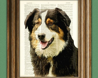 Australian Shepherd dog beautifully upcycled vintage dictionary page book art print