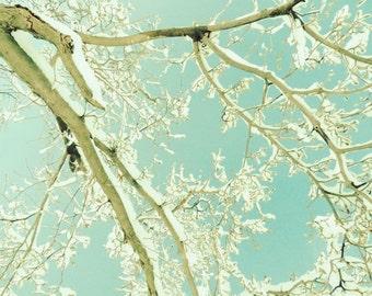 Calm Winter - Nature Art - Magic Mint Winter - Snow, Tree, Sky Art - Pastel - Winter Art - Wall Decor - Nature Photograph