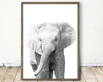 Baby Elephant Print, African Art, Safari Nursery Print, Animal Print, Boy Room Wall Art, Zoo Animal Art, Baby Shower, Printable Elephant