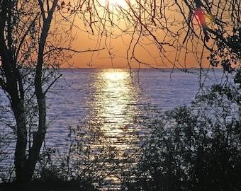 Island Paradise - Lake Erie Sunrise Photography Color Nature Print 5x7 Kelleys Island Beach at Dawn