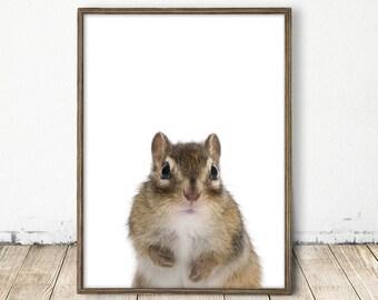chipmunk print, chipmunk art, cabin art, forest nursery, woodland nursery, baby animal print, baby animal art, woodland animal art, baby art