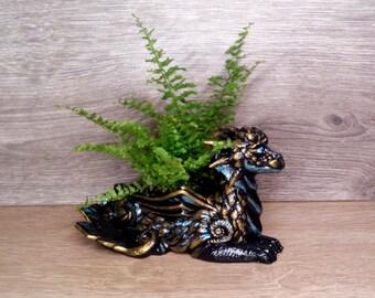 Planter Dragon for little plants