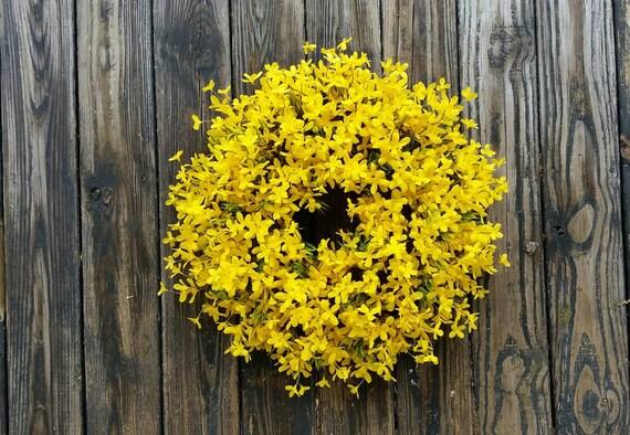 Spring Wreath, Summer Wreath, Easter Wreath, Forsythia Wreath