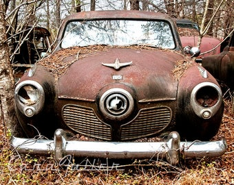 1951 Studebaker Bullet Nose Commander Land Cruiser the Woods Photograph