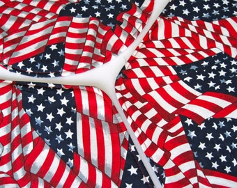 American Flag Wedge Reversible Placemats Red White and Blue Wedge Placemats for a round table Patriotic Wedge Placemats