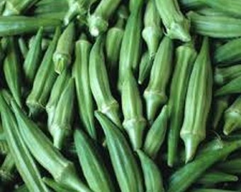 Clemson Spineless Okra Seed, 1 Lb. Seed, Certified Seed, Heirloom NON GMO