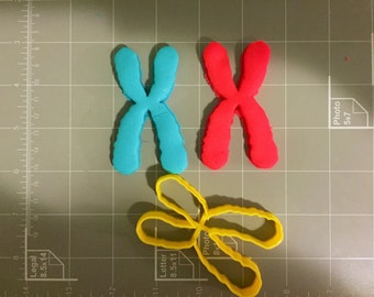 Chromosome Cookie Cutter