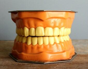 vintage dental advertising mouth model Lactona Inc, creepy decor, oddity, cabinet of curiosities, vintage dental