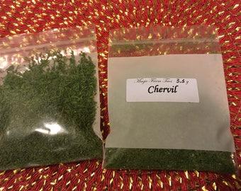 Chervil - Dried herb 1/8oz.