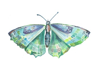 Butterfly Art Print - Watercolor Illustration - Bug Painting