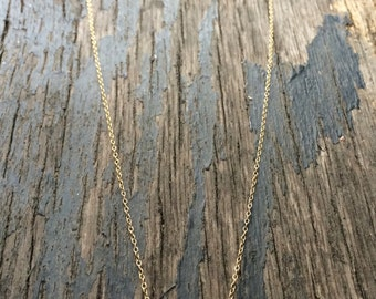 Horseshoe Charm on Dainty Gold Necklace - Good Luck Charm - Long or Short Necklace