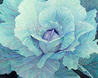 cabbage watercolor painting-botanical art-botanical painting-kitchen art-cafe art-vegetable art-food painting-food watercolor-food art