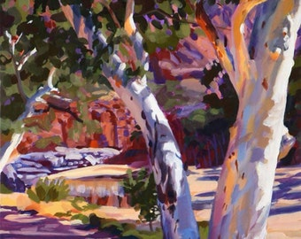 Oasis in the Desert...Ormiston Gorge Central Australia.