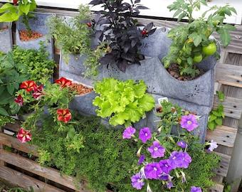 Gardening / Living wall / Planter / Vertical planter / Herb garden / Balcony / Herb planter / Vertical garden / various tones & designs