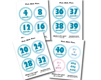 Monthly Pregnancy Printable Stickers, Weekly Baby Stickers, Printable, Instant Download, Weekly Bump Stickers Turquoise BUMP Stickers
