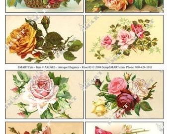 Roses of All Colors-8 Vintage Images on a Collage Sheet Digital Download