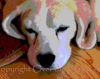 Beagle Card Beagle Napping Cute Beagle Gift for Dog Lovers