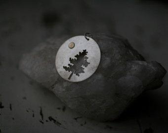 Full Moon Pine