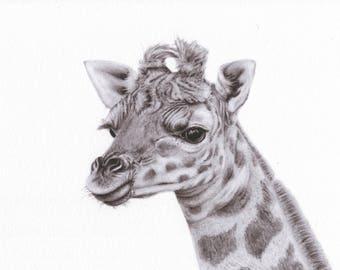 Cheeky Giraffe - A3 Giclée (fine art) Print