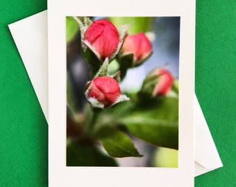 Handmade greeting card - note card - blank card - Mother's Day card - thank you card - any occasion card
