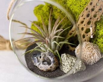 Kit de bricolage Terrarium || Géode, Pyrite + Desert Rose || Moyen tour suspendu