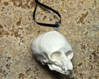 Werewolf Fetal Skull Ornament