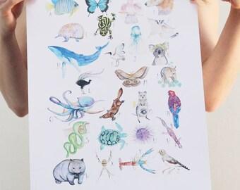 A3 - Australian Animal Alphabet print by Hannah WETZLER