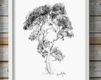 Eucalyptus Tree art - Pencil drawing - Giclee print -  nature Decor  -  Tree sketch - pencil Zen drawing Eucalyptus Tree illustration