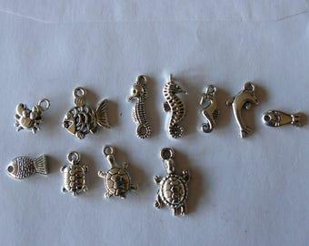 set of 11 charms