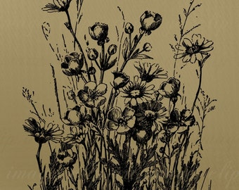 No Credit Required, Vintage Wildflowers Clip Art, Royalty Free