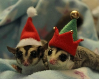 Festive Glider Hats!