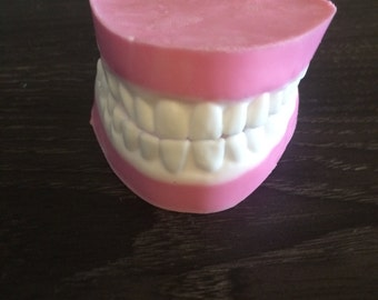 Teeth denture false teeth soap set in clear gift box great gag gift for Hallowen or just a joke