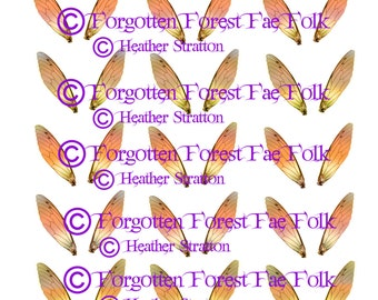 Assorted Printable Autumn Gold fairy wings