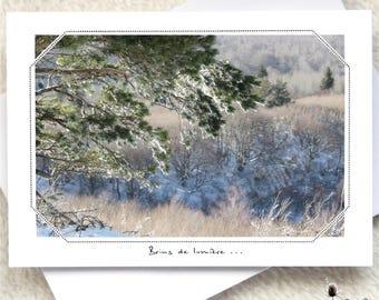 455. Winter transparencies...