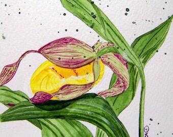 Wildflower Notecards - No.  551  Yellow Lady's Slipper