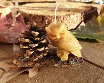 Candle in pure beeswax-owl