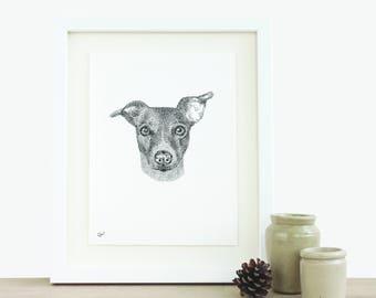 Tierportrait maßgeschneiderte Illustration benutzerdefinierte Zeichnung Haustier Zeichnung Hund Zeichnung Katze Zeichnung Original Artwork Original Tusche-Zeichnung