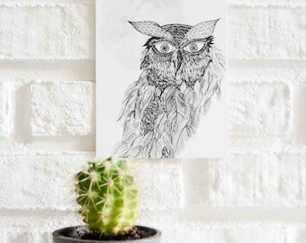 Owl Illustration Postcard