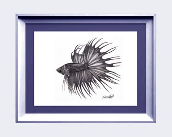 Original, Black crowntail Betta, 8x10 inches, Strathmore paper, Graphite Aquarelle