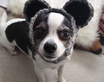 Raccoon Cowl for Dogs