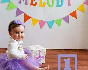 One-derful First birthday outfit girl purple and gold birthday outfit 1st birthday girl outfit Baby girl first birthday outfit Onederful