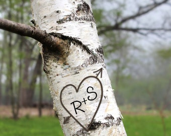 personalized art print, carved heart in tree, tree initials, birch tree, anniversary gift, engagement gift, bridal shower, rustic wedding