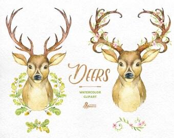Deers. Watercolor deers with antlers, hand painted clipart, floral, invite, country, diy clip art, horns, flowers, boho deer